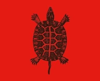 Animalia Design